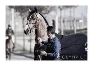 LANAKEN, championnat du Monde des jeunes chevaux 2019